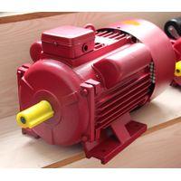 YL Series Single Phase motor