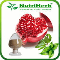 Pomegranate Peel Extract/ Pomegranate Extract 40% 90% Ellagic Acid