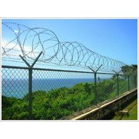 airport fencing, pvc coated fencing with razor wire on top(factory)