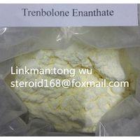 Best Quanlity 99% Trenbolone Enanthate CAS No: 472-61-546 Hormone Steroids Raw Powder