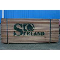 American black walnut lumber/timber