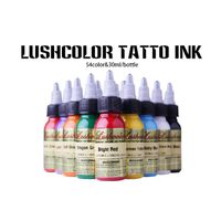 Lushcolor Micro Pemanent Eyebrow Tattoo Ink