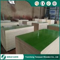 Green/Blue/Customized Color Reused PVC Plastic Coated /PP Plywood
