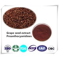 Grape Seed Extract 95% Cas number:84929-27-1 1kg/bag thumbnail image