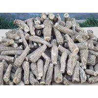 costus root(saussurea costus)
