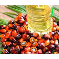 Refined Palm Olein - Crude Palm Oil (CPO), CP8, CP10, CP0 thumbnail image