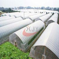 Agricultural Single Span Plastic Film GreenhouseAgricultural Single Span Greenhouse
