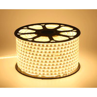 High voltage waterproof lamp strip 220V lamp belt (can be customized)