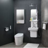 ALL in One shower system thumbnail image