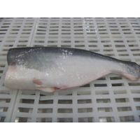 Frozen Pangasius well trimmed
