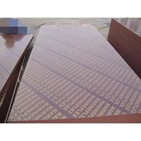 China concrete formwork plywood