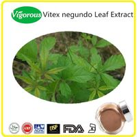 100% Pure Natural Vitex negundo Extract/Vitex negundo Leaf Extract/Vitex negundo Powder