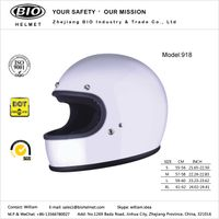 New Design Motorcycle Helmets DOT proved