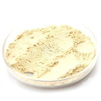 panax ginseng extract powder