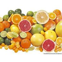 Citrus fruits available.