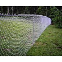 Chain link sport fence