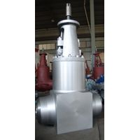 Pressure seal gate valve in BW end for power station