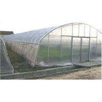 the monomer insertion shed greenhouse thumbnail image