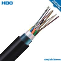 2 core 4 core 6 core GJXFH / GJXH ftth g652 g657a corning fiber optic cable