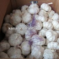 high quality china fresh garlic supplier thumbnail image