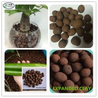 8-16mm Expanded Clay for hydroponics thumbnail image