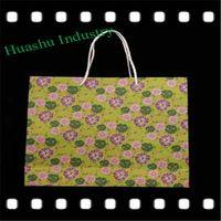 Nice Handbag Look Shopping Paper Bag for Women