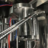 Automatic Spout Pouch Packing Machine For Juice Filling Machine thumbnail image