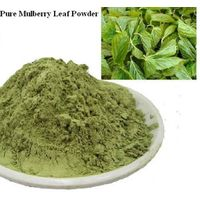 Quality Green Mulberry Leaf Powder