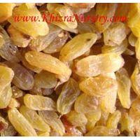 Golden Yellow Raisins thumbnail image