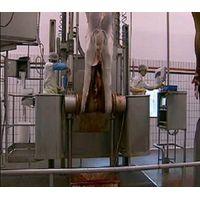 HYDRAULIC TYPE CATTLE SKIN REMOVED MACHINE