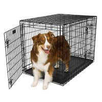 cheap and durable polished pet cage