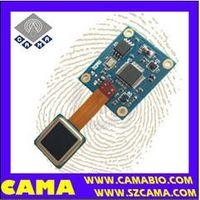 CAMA-AFM31 Smallest size capacitive fingerprint sensor module with competitive price thumbnail image