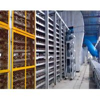 paper faced gypsum board production plant thumbnail image