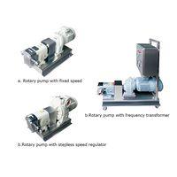Rotor pump thumbnail image