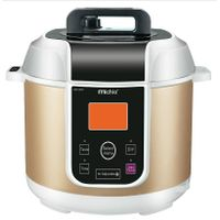 Moto Touch Electric Pressure Cooker Household Appliance (ZH-M509G)