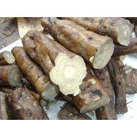 Kudzu Root ( Puerara ) Extract
