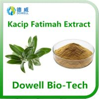 Factory supply natural top quality female Kacip Fatimah Extract 5:1,10:1