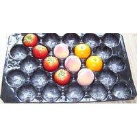 39*59cm Black Color Peach/Tomato/Apple Packing Disposable Plastic Packaging Tray thumbnail image