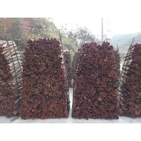 Best qualilty Chinese cassia