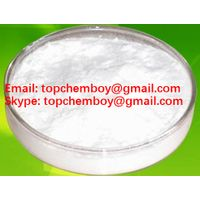 Methyl Testosterone powder steroid powder supplier CAS NO.58-18-4