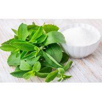 Natural Sweeteners Organic Stevia Leaf Extract Stevioside Powder
