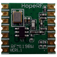 RF Transmitter Module RFM119W