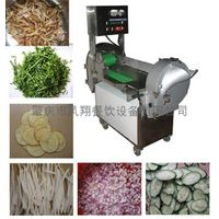 Multifunction inverter Controlled Vegetable Cutter thumbnail image
