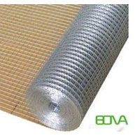 Factory Price  Hot dipped Galvanized Wire Mesh