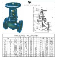 Cast Iron Globe Valve Flanged Ends BS5152:BS4504 PN16