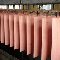Copper Cathodes, Copper Sheets, Copper Wire, Copper Coils, Copper Ingots.