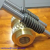 OEM design metal worm & worm gear by taixin