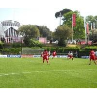 artificial grass,artificial turf, synthetic turf, artificial yarn thumbnail image