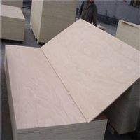 Baier High Quality Plywood/Film Faced Board