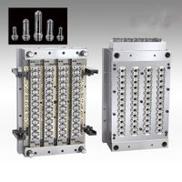 48-Cavities PET-Preform injection mould